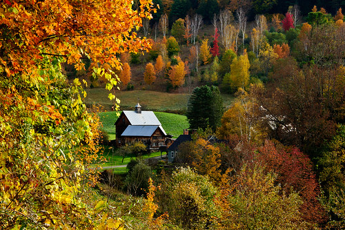 trees sunrise vermont farm fallcolors woodstock ridgeroad leefarm