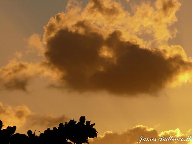 Sunset at Tamarin Mauritius