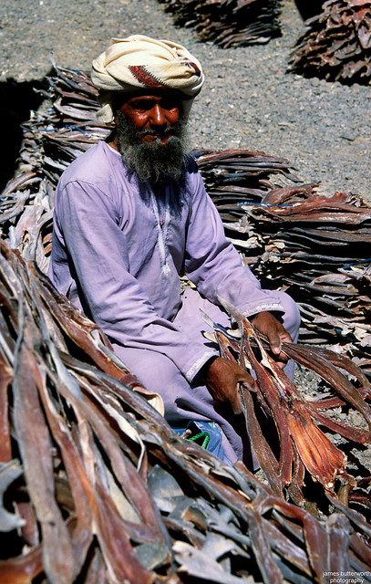 Dried Fish Seller at Nizwa Oman