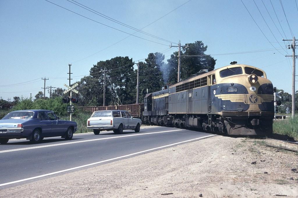Long Island Steel Train Crossing Frankston - Flinders Road by Alan Greenhill