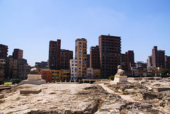 Alexandria Suburbia