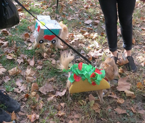Taco and Taco Truck (Fort Green Pup Costume Parade, 2015)