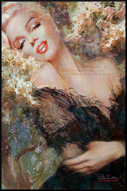 Marilyn Cherry Blossom