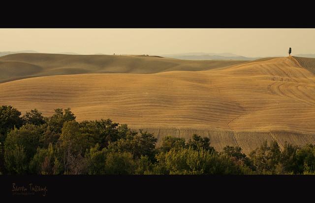 Barren Tuscany 2.