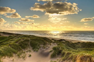 golden north sea beach, Denmark | by magnetismus
