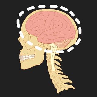 brain 2 | by jetheriot