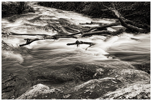 longexposure trees bw water river landscape blackwhite movement rocks nj sigma chester blackriver rise 1020mm d300 warrenhaynes coopermill robertcatalano