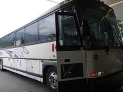 木, 2011-08-11 14:29 - Squamishに停車中のGreyhoundバス