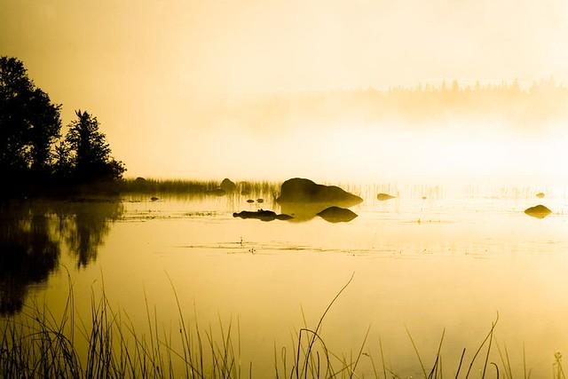 Morning White Light on Bended Lake