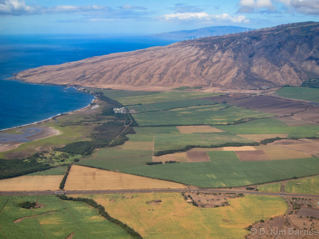 The dry side of Maui