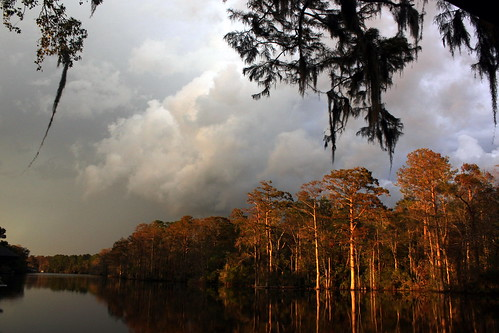 autumn trees light shadow storm water rain weather silhouette clouds canon landscape evening northcarolina front cumulus spanishmoss cypress newbern bricescreek t1i