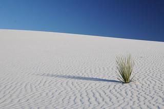 white sands | by *monika