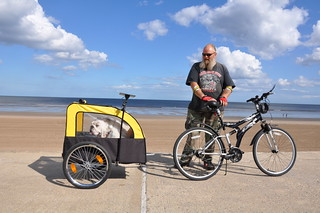 #3 Dog Mobility in Mablethorpe | by K8ieSmith