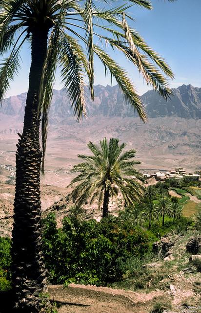 Wakhan Ghubrah Bowl Oman