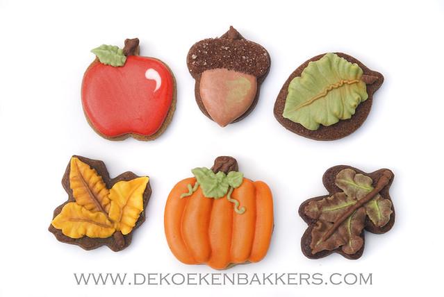 Autumn minicookies