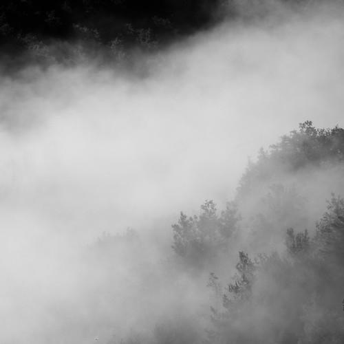 morning blackandwhite france tree fog montagne square pentax lot 100mm arbres brouillard fa brume k5 matin carré midipyrénées noirteblanc pentaxk5