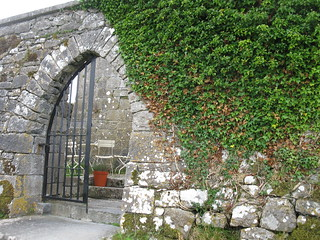 Ballyportry Castle | by carobe