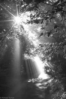 Easton Mornings | by RichardTurnerPhotography
