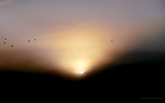 Amanecer con niebla - Historias de una ventana XI -