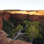 Kings Canyon 國王峽谷