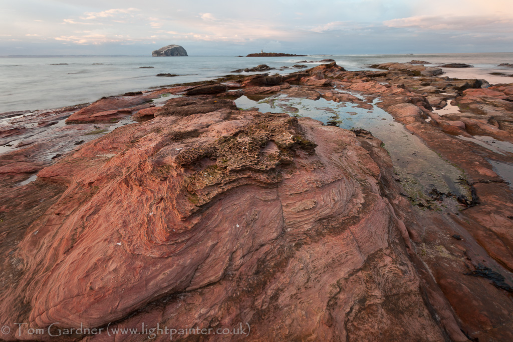 Eroded red sandstone, Seacliff