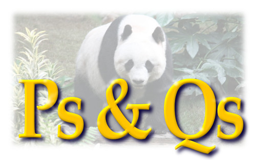 Mind your Ps & Qs to Avoid the Panda Updates | by Si1very