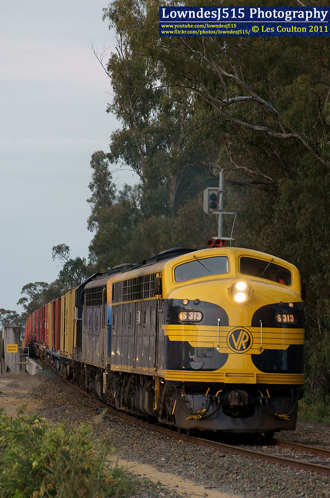 S313, B76 & T356 at Echuca by LowndesJ515