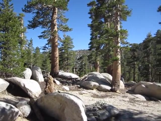 0731 Newton Drury Peak Saddle video panorama