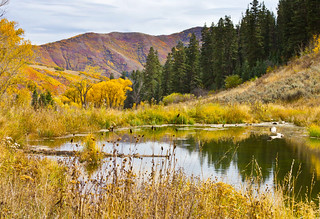 Utah Mountain Pond in Fall | by DeanAndrew.com