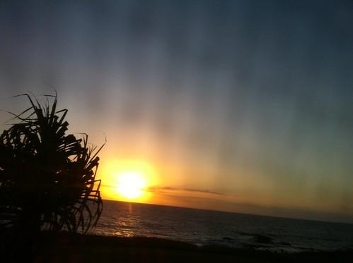 ocean sunrise palm bargara
