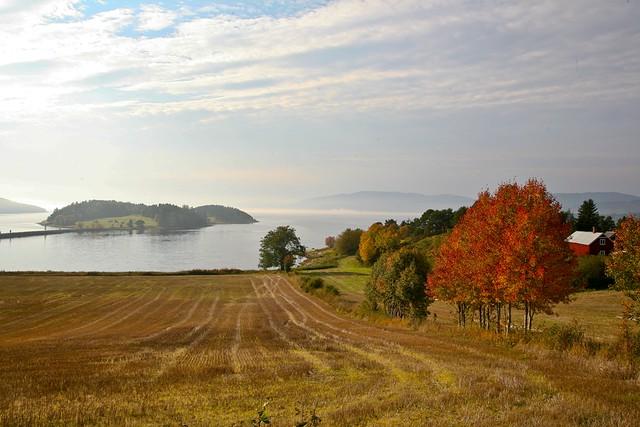 Høst ved fjorden