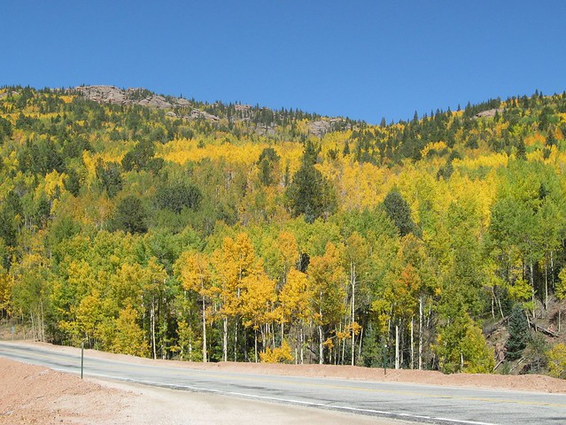 Hwy 67 between Divide and Cripple Creek