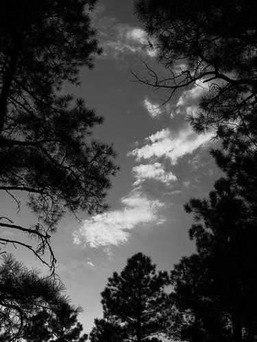 sunset arizona monochrome clouds whitemountains pinetop pinetoplakeside pinetoparizona