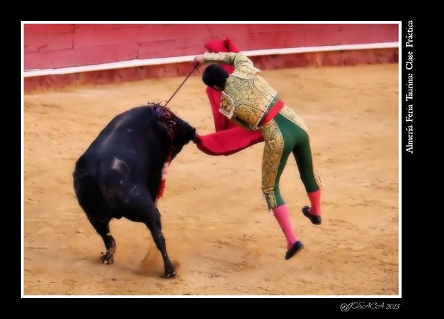 Almería Feria Taurina 2015: Clase Práctica