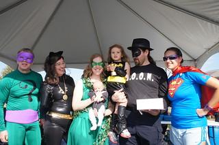 Super Group Winner: Batman Villains and Batgirl   by CASA of Travis County