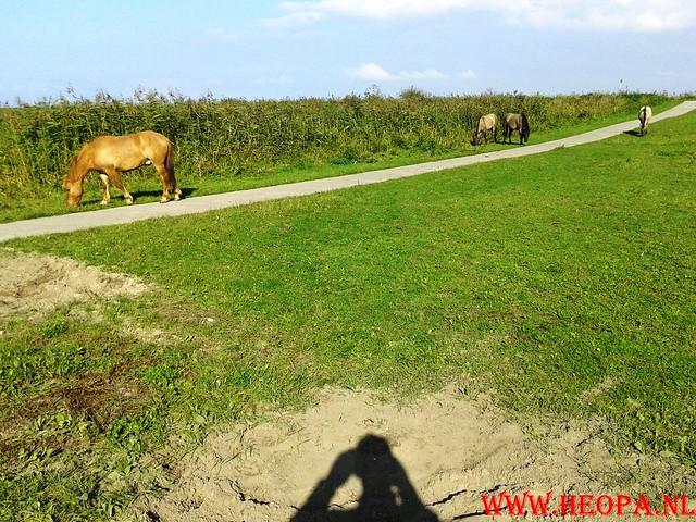 2015-10-09 Test wandeling 26 Km Oostvaarders  (13)