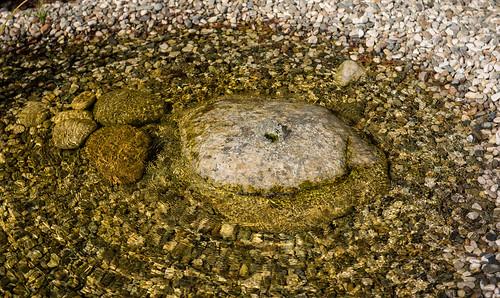 F Milla blueBase base2 bio Teich Wasserspiel detail | by mymilla - biopool & garden