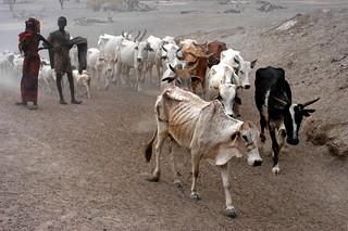 NYHQ2006-0044 | by UNICEF Ethiopia