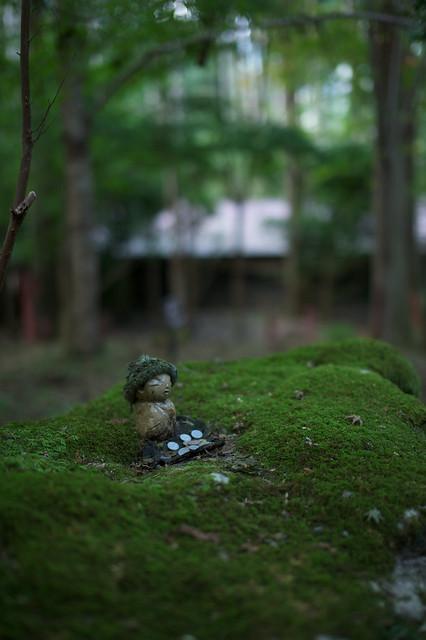 20110928 Kyoto-Ohara 10 (Alone)