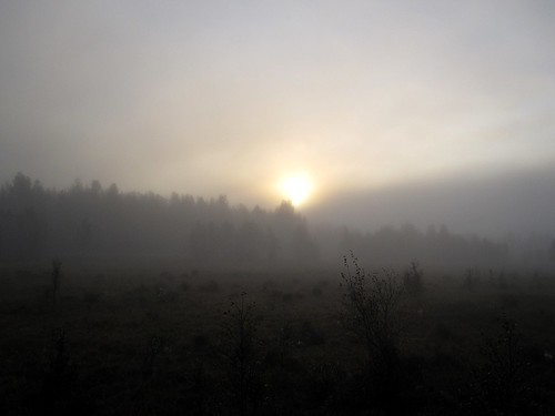 Soluppgång i dimma | by herr_eriksson