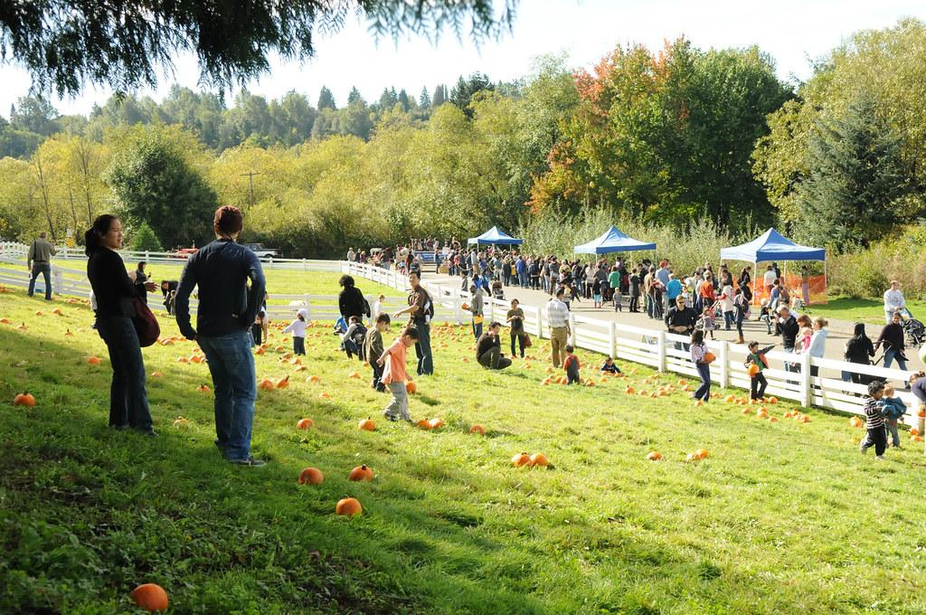 Kelsey Creek Park - photo by City of Bellevue | Bellevue.com