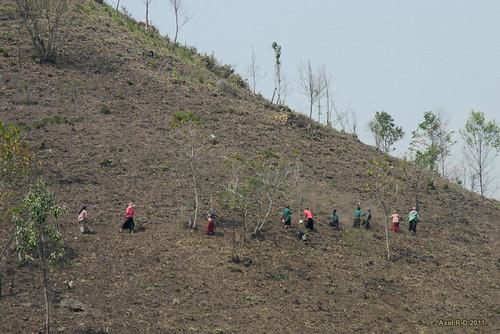 people hill myanmar local tribe shanstate kyaingetong