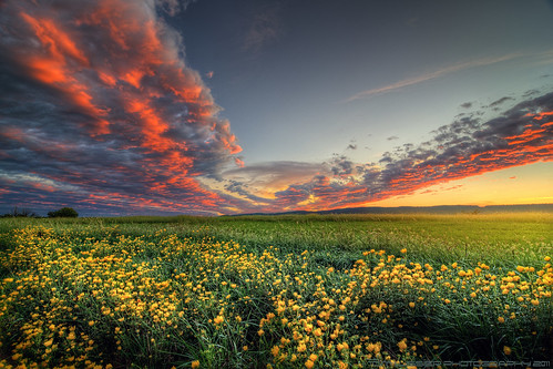 sunset mountain flower clouds landscape virginia nikon d300 loudouncounty tomlussier