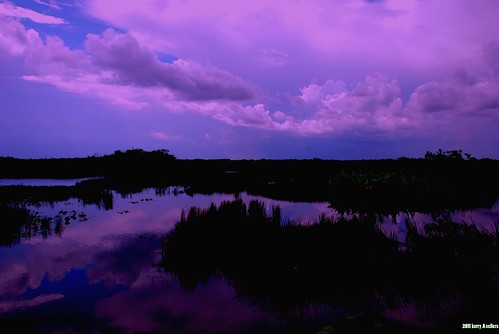 silhouette landscapes florida nightscapes waterscapes wildfloridastormcontest