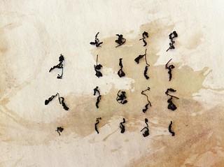 Calligraphie à la feuille d'oolong cha infusée puis séchée   by Stéphane Barbery