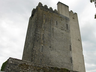 Ballyportry Castle | by carobe