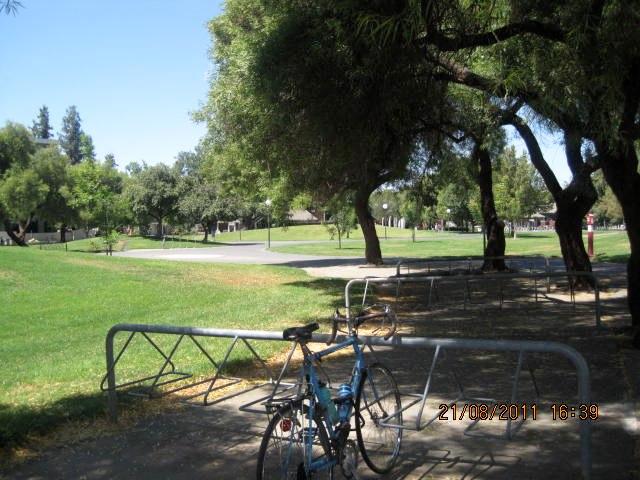 Park like grounds at UC Davis