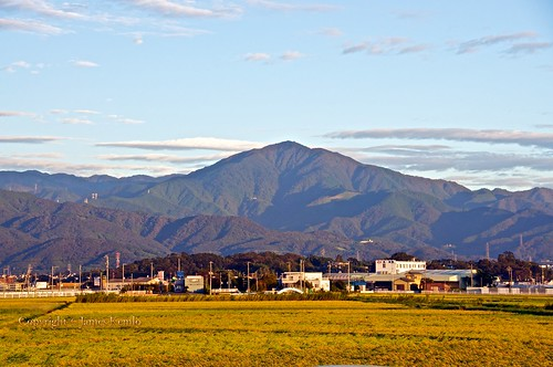 mountains japan sunrise rice crops agriculture flattened kanagawa typhoon hiratsuka fileds mountõyama ©jameskemlo ©junpeihayakawa