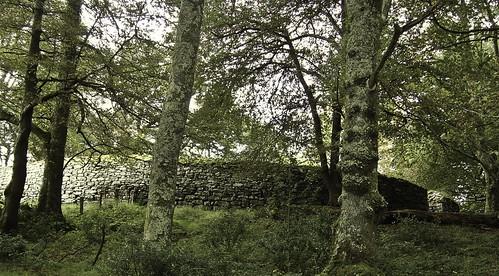 ireland roscommon ringfort cotyrone loughgara clogherfort