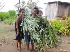 vr, 24/06/2011 - 05:21 - 070. Meisjes van Nomuka (Ha'apai, Tonga) met pandanusbladeren